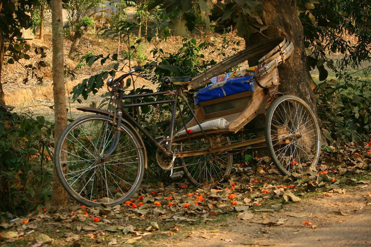 rickshaw-55175_1920