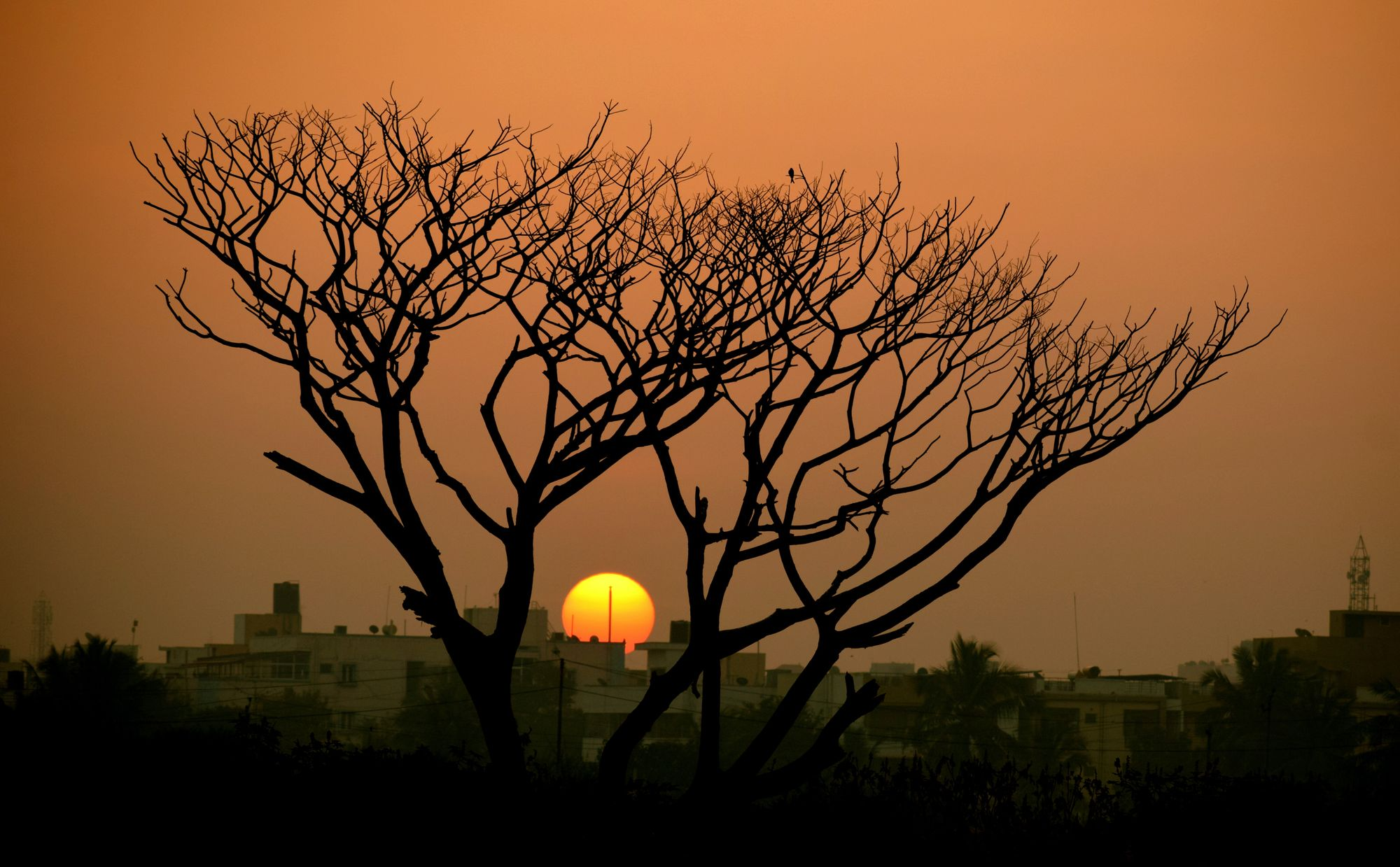8 lakes in and around Bangalore that are a perfect outing
