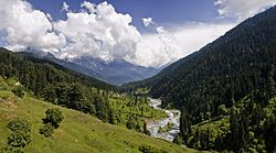Escape to the heaven! All you need to pack for a vacation in Kashmir!
