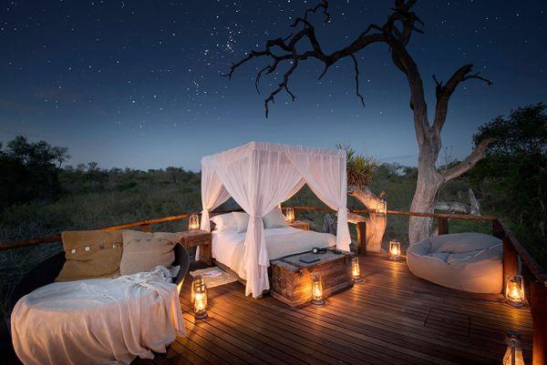 How to turn any Wildlife Safari Trip Romantic